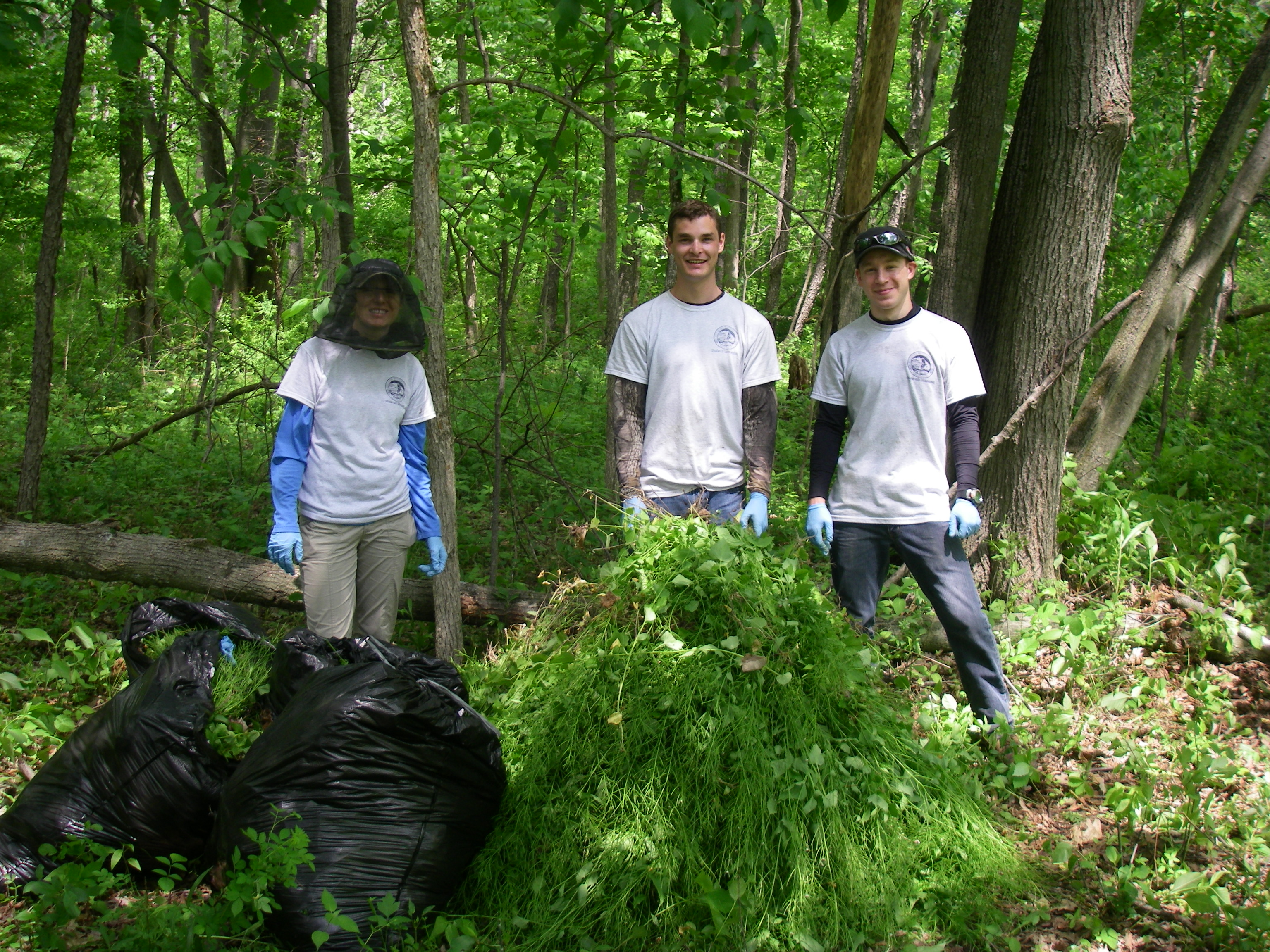 Caring for Natural Areas in Our Parks