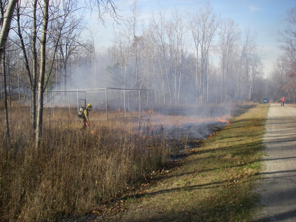 The short, green grass along the trail was a safe fire break. Here a crew member begins lighting along the western flank.