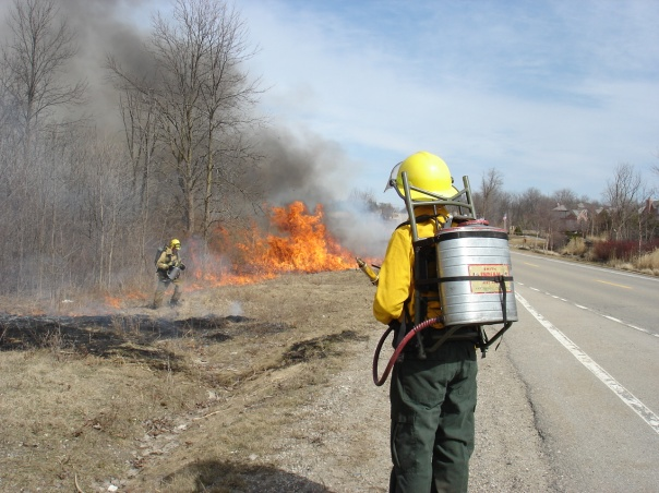 Our prescribed fire contractor burns at Gallagher Creek Park, spring 2015.