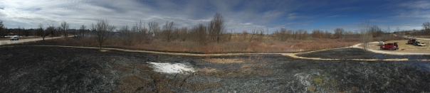 Gallagher Creek Park after the controlled burn on March 20, 2015. Visit the park later this spring to watch the green return.