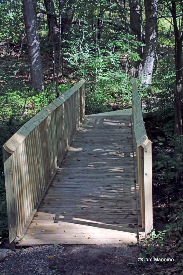 New bridge in Western Woods