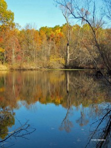 Center Pond in Autumn