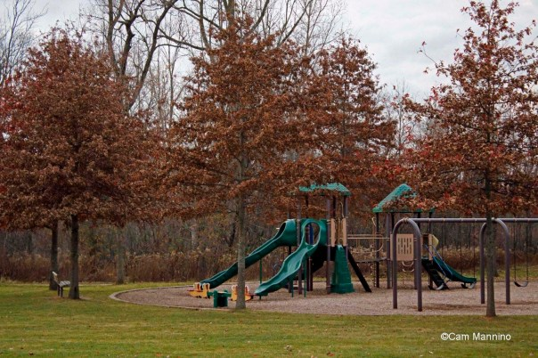 Pin Oaks Playground Fall