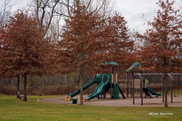 Pin Oaks Playground Fall