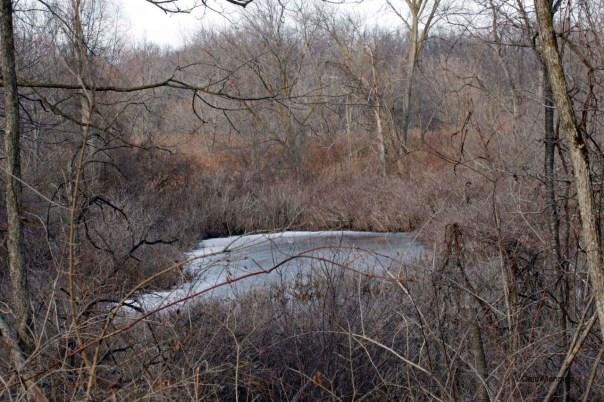 Hidden pond at BC