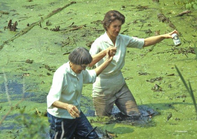 Alice Tomboulian and Stepmom in Marsh