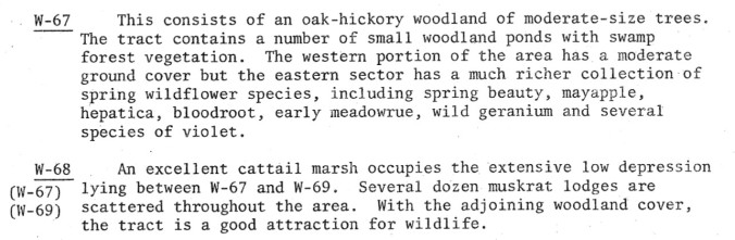 Paul Thompson's description of the oak-hickory forest on the north end of Bear Creek Nature Park.