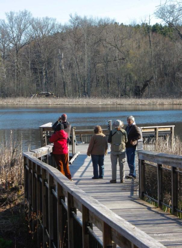 Birders at Fishing Dock Draper