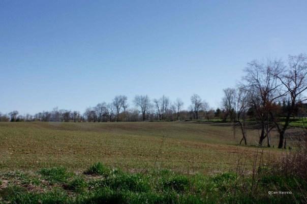 Prairie turning green Draper