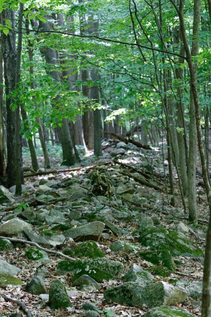 Stone wall SCR