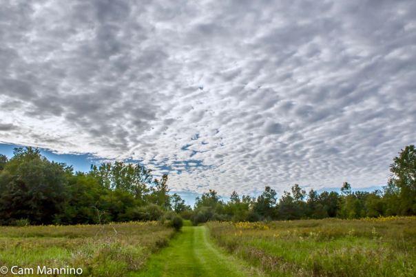 Mackerel sky CL