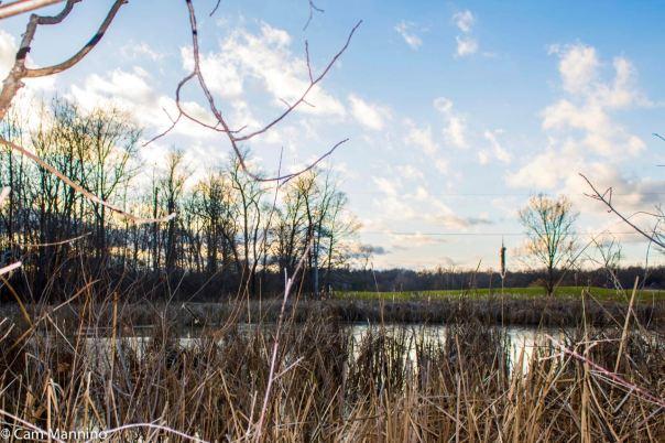 Pond at Watershed Ridge
