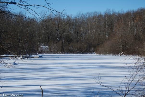 Center Pond striped w shadows and snow 2 BC