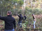 FCA volunteers worked with great enthusiasm to cut buckthorn at Bear Creek Nature Park.